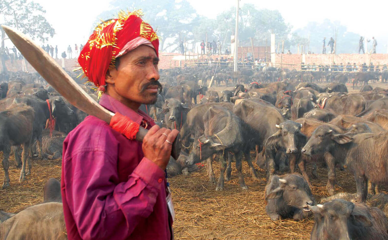 Activists decry animal slaughter at Nepal temple