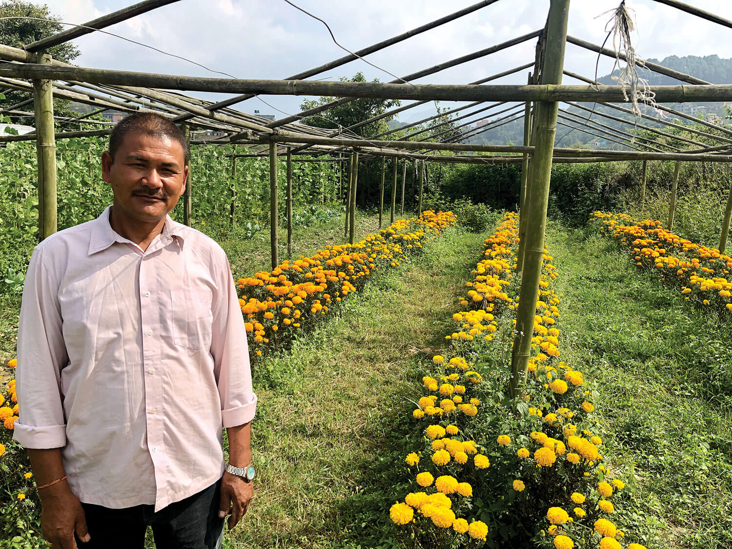 Migrant worker finds farming in Nepal more rewarding