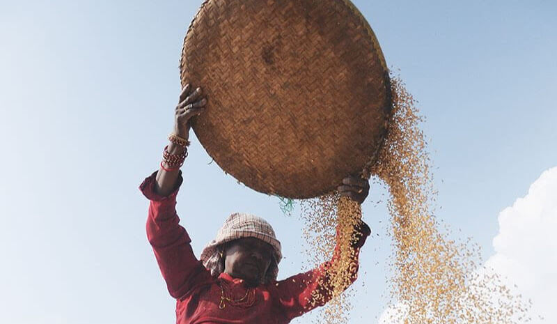 Save farms, empower farmers, Nepal citizens' appeal