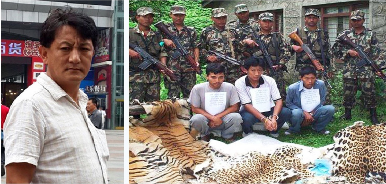 Wildlife smuggler caught in Kathmandu after 15 years