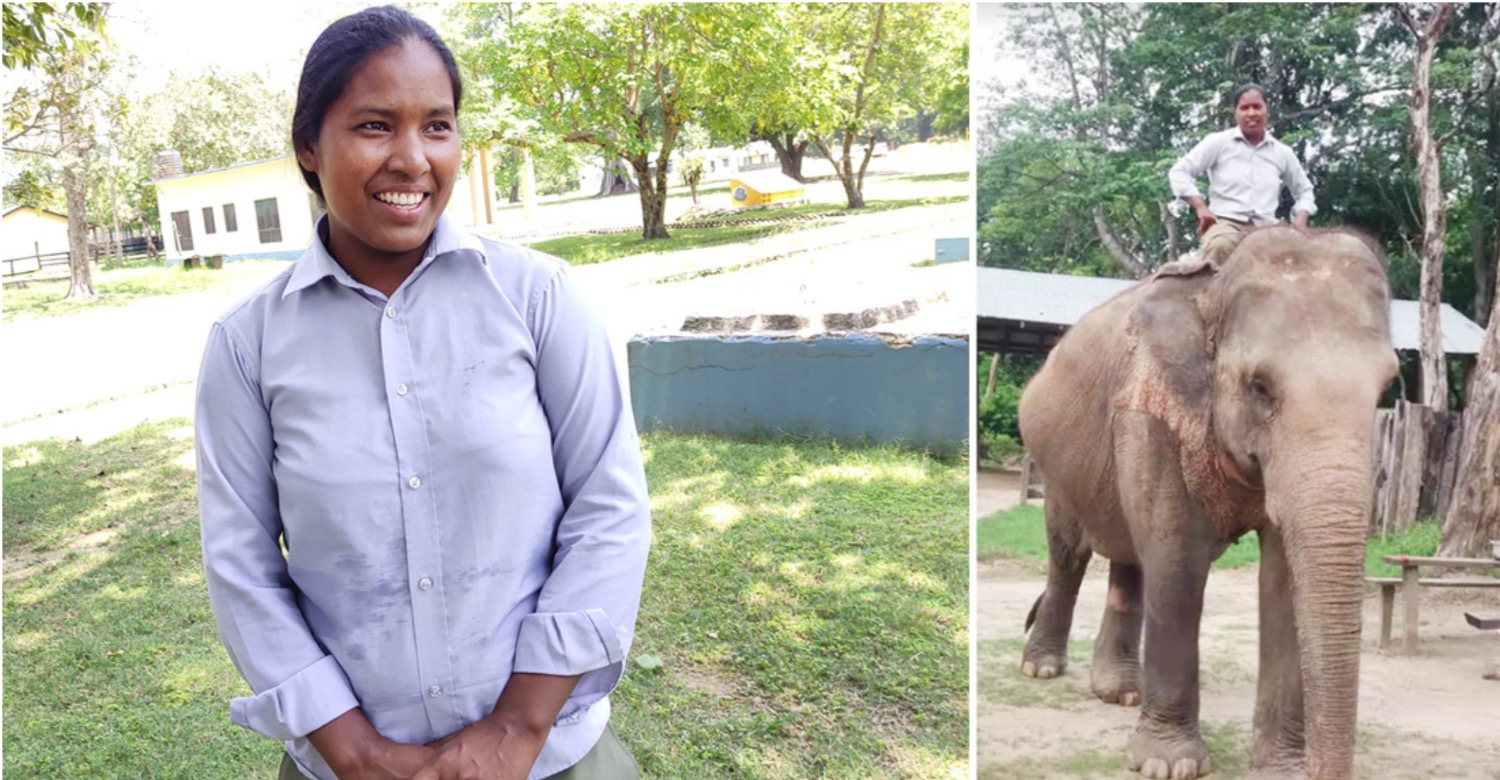 Don't follow my footsteps, says female mahout