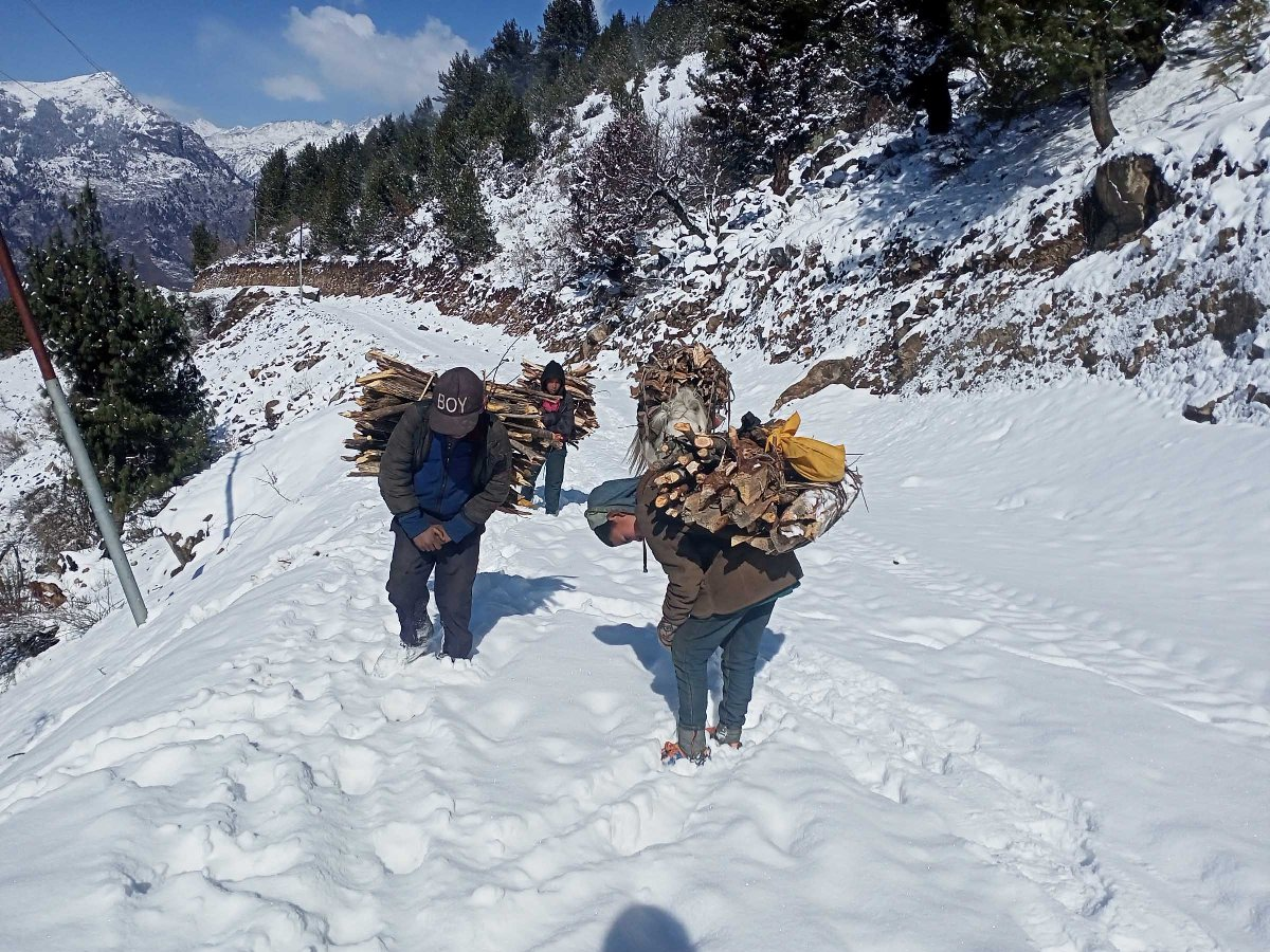 Locals carry firewood amid Simikot snowfall