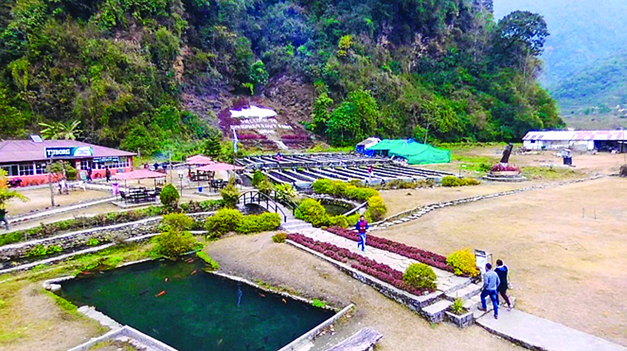 Revival of trout farms